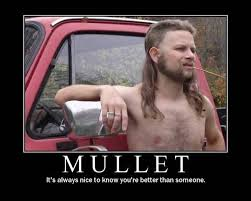 mullet.jpg